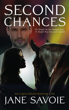 Second Chances Book